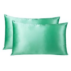 Brand New Royal Comfort Mulberry Silk Pillow Case Twin Pack - Mint